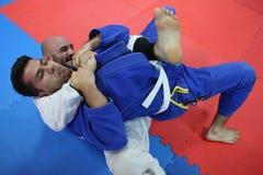 Μαχητές τζούντου Στοκ Φωτογραφίες
