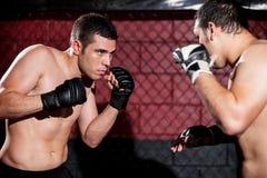 Μαχητές MMA κατά τη διάρκεια μιας αντιστοιχίας Στοκ Εικόνα