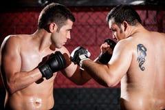 Μαχητές MMA κατά τη διάρκεια μιας πάλης Στοκ Εικόνες