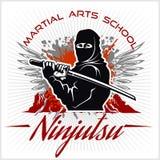 Μαχητής πολεμιστών Ninja - μικτή πολεμική τέχνη διανυσματική απεικόνιση
