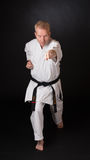 Μαχητής που εκτελεί karate τη θέση Στοκ φωτογραφίες με δικαίωμα ελεύθερης χρήσης
