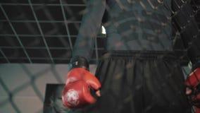 Μαχητής MMA στο κλουβί οκταγώνων τα όμορφα μάτια φωτογραφικών μηχανών τέχνης διαμορφώνουν την πλήρη γοητεία που τα πράσινα βασικά απόθεμα βίντεο