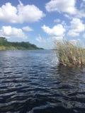 Μαϊάμι Everglades Στοκ Εικόνες