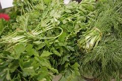 Μαϊντανός και άνηθος Φρέσκα, οργανικά, χορτάρια κήπων, άνηθου και μαϊντανού Πράσινες βιταμίνες detox Αρωματικά χορτάρια για τη σα στοκ φωτογραφία με δικαίωμα ελεύθερης χρήσης