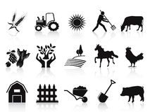 μαύρα αγροτικά εικονίδια γεωργίας που τίθενται Στοκ Φωτογραφία