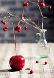 Μαύρα και κόκκινα καραμελοποιημένα μήλα αποκριών Στοκ εικόνα με δικαίωμα ελεύθερης χρήσης