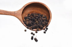 Μαύρα καρυκεύματα πιπεριών στο ξύλινο κουτάλι Στοκ εικόνα με δικαίωμα ελεύθερης χρήσης