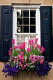 Μαύρα παραθυρόφυλλα παραθύρων με τα ανθίζοντας λουλούδια στοκ φωτογραφίες