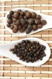 Μαύρα πιπέρι και ινδοπέπερι Στοκ Εικόνες