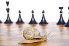 Μαύρα σκάκι και σαλιγκάρι στη σκακιέρα Στοκ εικόνα με δικαίωμα ελεύθερης χρήσης