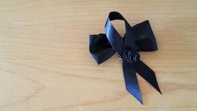 2 μαύρα τόξα Στοκ Εικόνα