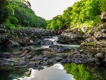 Μαύρα φαράγγια Μαυρίκιος ποταμών στοκ εικόνες με δικαίωμα ελεύθερης χρήσης