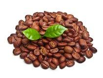 Μαύρα φασόλια καφέ, σιτάρι με το φύλλο στοκ φωτογραφίες με δικαίωμα ελεύθερης χρήσης