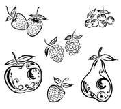 Μαύρα φρούτα Στοκ Φωτογραφία