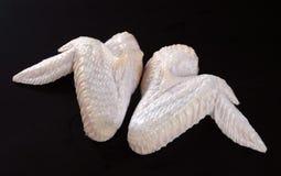 μαύρα φτερά κοτόπουλου στοκ εικόνες