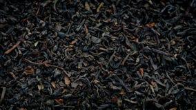 Μαύρα φύλλα τσαγιού που περιστρέφονται την κινηματογράφηση σε πρώτο πλάνο απόθεμα βίντεο