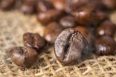 Μαύρα ψημένα arabica φασόλια καφέ με την επίδραση καπνού Στοκ Εικόνα