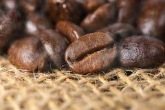 μαύρα ψημένα arabica φασόλια καφέ Στοκ Εικόνες