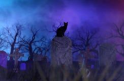 Μαύρες γάτες στο νεκροταφείο απεικόνιση αποθεμάτων
