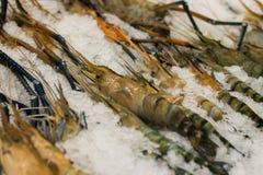 Μαύρες γαρίδες τιγρών σε μια αγροτική στάση Στοκ Εικόνες