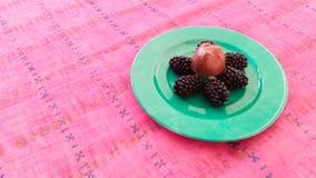 Μαύρες μουριές με τη σοκολάτα Στοκ Εικόνες
