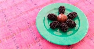 Μαύρες μουριές με τη σοκολάτα Στοκ Φωτογραφίες