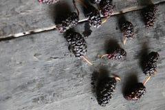 Μαύρες μουριές στο ξύλινο υπόβαθρο Στοκ Εικόνες