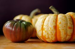 Μαύρες ντομάτα οικογενειακών κειμηλίων και κολοκύνθη καρναβαλιού στοκ φωτογραφία με δικαίωμα ελεύθερης χρήσης