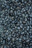 Μαύρες πέτρες στο υπόβαθρο κήπων Στοκ Εικόνα