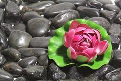 μαύρες πέτρες Στοκ φωτογραφίες με δικαίωμα ελεύθερης χρήσης