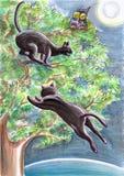 Μαύρες περιπλανώμενες γάτες και μια κουκουβάγια σε ένα δέντρο Στοκ Φωτογραφίες