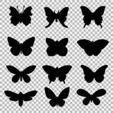 Μαύρες πεταλούδες που τίθενται στο διαφανές υπόβαθρο Στοκ Φωτογραφία
