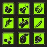Μαύρες σκιαγραφίες των φρούτων και των μούρων Στοκ Εικόνες