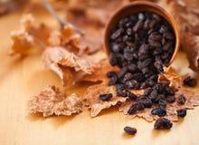 Μαύρες σταφίδες σε ένα ξύλινο κύπελλο Στο ξηρό φύλλο και την καφετιά ξύλινη ΤΣΕ Στοκ Εικόνα