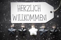 Μαύρες σφαίρες Χριστουγέννων, Snowflakes, μέσα Herzlich Willkommen ευπρόσδεκτα Στοκ φωτογραφίες με δικαίωμα ελεύθερης χρήσης