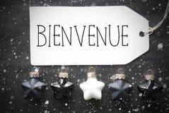 Μαύρες σφαίρες Χριστουγέννων, Snowflakes, Bienvenue Means Welcome Στοκ Εικόνες