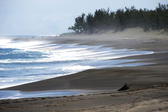 μαύρη άμμος παραλιών Στοκ Εικόνα
