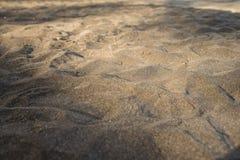 μαύρη άμμος παραλιών Στοκ Φωτογραφίες
