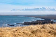 Μαύρη άμμος της Ισλανδίας στη μεσημβρία με τη χαμηλή ομίχλη και την ξηρά χλόη Στοκ Φωτογραφίες