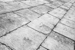 Μαύρη & άσπρη λεπτομέρεια Στοκ Εικόνες