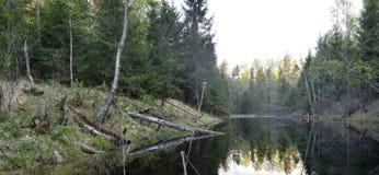 Μαύρη λίμνη Στοκ εικόνες με δικαίωμα ελεύθερης χρήσης