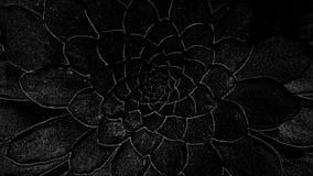 Μαύρη ανασκόπηση Στοκ Εικόνα