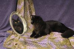 μαύρη αντανάκλαση γατών mirroe Στοκ φωτογραφία με δικαίωμα ελεύθερης χρήσης