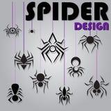 μαύρη αράχνη Στοκ φωτογραφίες με δικαίωμα ελεύθερης χρήσης
