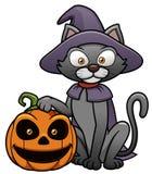 Μαύρη γάτα με την κολοκύθα αποκριών ελεύθερη απεικόνιση δικαιώματος