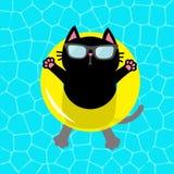 Μαύρη γάτα που επιπλέει στον κίτρινο κύκλο νερού επιπλεόντων σωμάτων λιμνών Τοπ άποψη αέρα Γειά σου καλοκαίρι Νερό πισινών Γυαλιά διανυσματική απεικόνιση