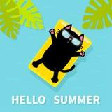 Μαύρη γάτα που επιπλέει στο κίτρινο στρώμα νερού λιμνών αέρα Γειά σου καλοκαίρι μπλε δέντρο σύστασης φωτογραφιών εγγράφου φοινικώ διανυσματική απεικόνιση
