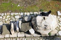 Μαύρη γάτα στην αρχαία ρωμαϊκή μαρμάρινη στήλη Στοκ φωτογραφία με δικαίωμα ελεύθερης χρήσης