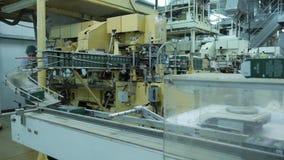 Μαύρη γραμμή παραγωγής τσαγιού, εργοστάσιο τσαγιού απόθεμα βίντεο