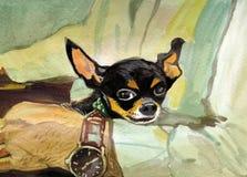 Μαύρη ζωγραφική watercolor chihuahua Στοκ Φωτογραφίες